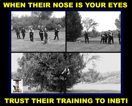 nose is your eye